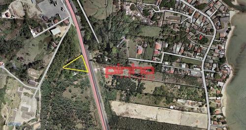 Imagem 1 de 15 de Terreno Na Br-101 À Venda, Com Área De 4.584,50m² Por R$ 500.000,00 - Praia De Fora - Palhoça/sc - Te0013