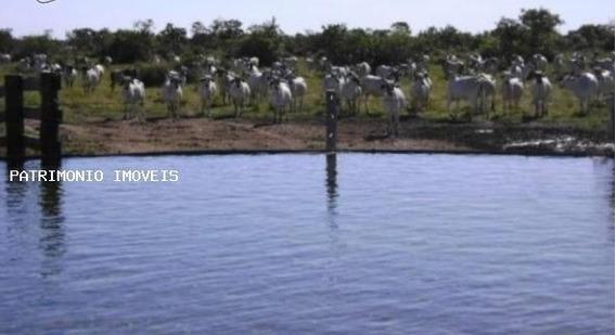 Fazenda Para Venda Em Cocalinho, Fazenda Zona Rural Cocalinhor$ 600.000.000 - 53129_2-835050
