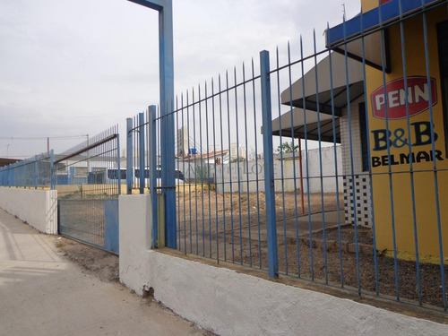 Imagem 1 de 15 de Terreno À Venda Em Centro - Te001102