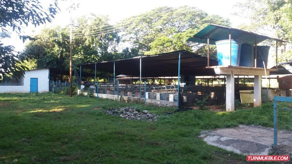 Oportunidad De Invertir Finca Agropecuaria San Carlos