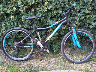 Bicicleta Raleigh Scout R24