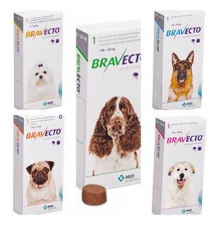 Bravecto Antigarrapatas Pulgas Dermatitis Acaros 2kg A 56 Kg
