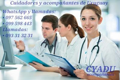 Acompañante Y Cuidado De Enfermos, Pacientes Y Adulto Mayor