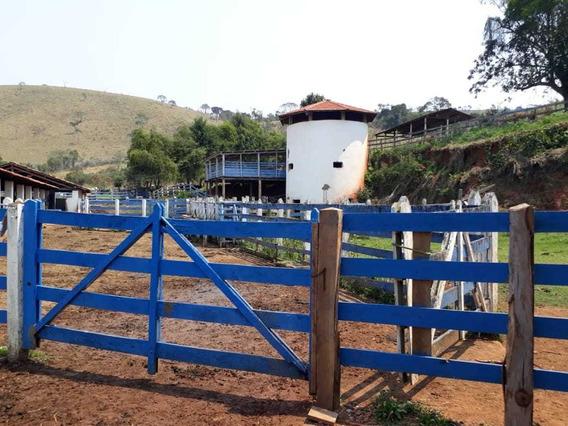 Linda Fazenda Na Região Do Vale Do Paraíba Sp
