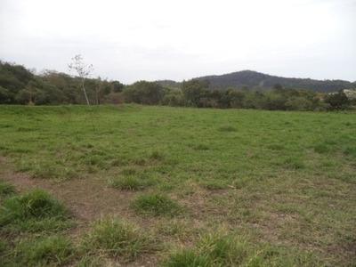 Terreno Em Jardim Dos Pinheiros, Atibaia/sp De 10000m² À Venda Por R$ 600.000,00 - Te103128