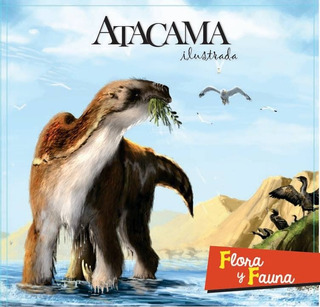 Libro Álbum Atacama Ilustrada