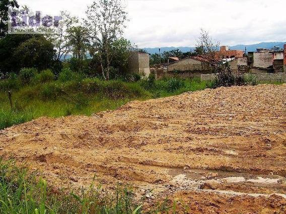 Terreno À Venda, 2590 M² Por R$ 300.000,00 - Jaraguá - São Sebastião/sp - Te0111