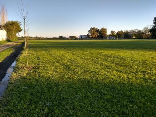 Terrenos - Loteo - En Venta En Navarro