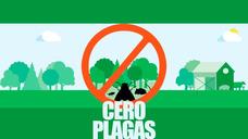 Control De Plagas, Fumigaciones A Casas