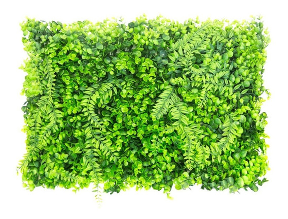 Jardines Verticales Paneles 60 X 40 Vertical Green Apolo