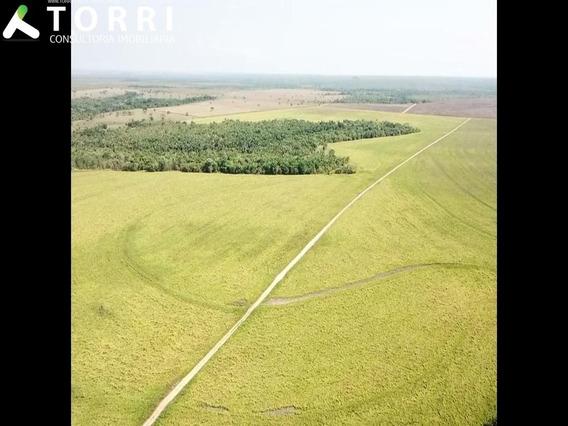 Fazenda A Venda Em Guaraí, To - Fa00039 - 67814399