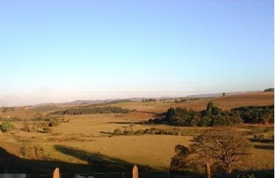 Fazenda Em Zona Rural, Monsenhor Paulo/mg De 800m² À Venda Por R$ 5.700.000,00para Locação R$ 22.000,00/mes - Fa178744lr