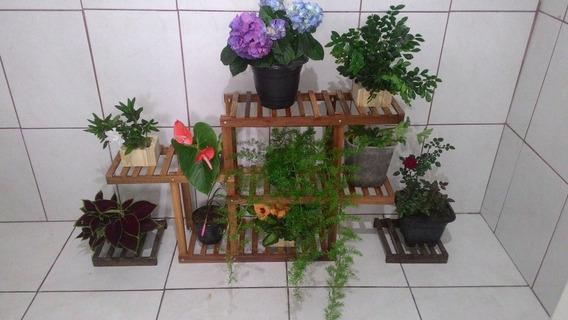 Floeira Decorativa Para10 Vasos Jardim Vertical Suculentas