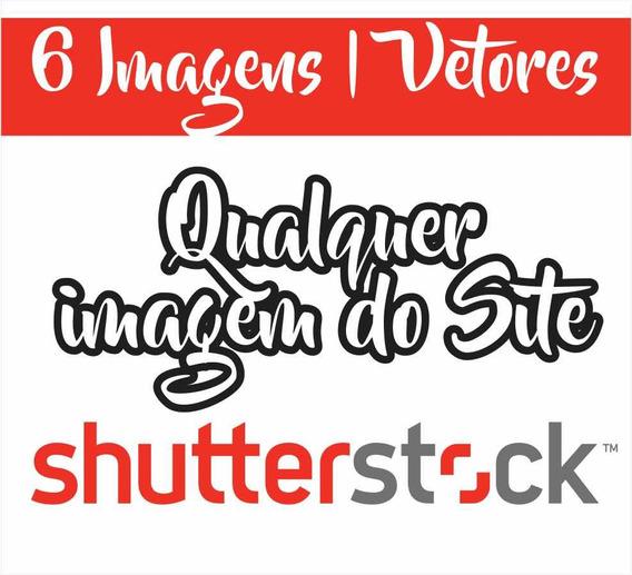 6 Imagens Média Resolução Shutterstock - Fotos E Vetor