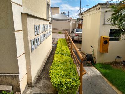Apartamento Com 3 Quartos Para Comprar No Serrano Em Belo Horizonte/mg - 40705