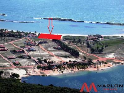 Vtp01036 Terreno Na Beira Mar Da Enseada Praia De Tabatinga