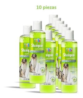 Kit De Shampoo Essentials Antipulgas (10 Piezas)