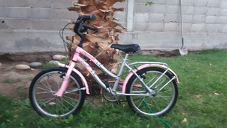 Bicicleta Tomaselli R1 Nena