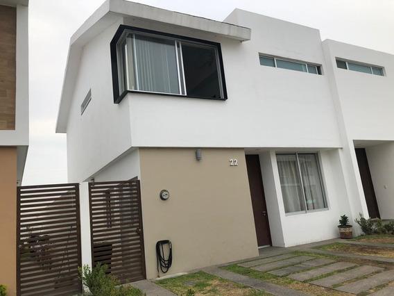 Casa En Renta Camino Las Moras . Fracc La Cibela