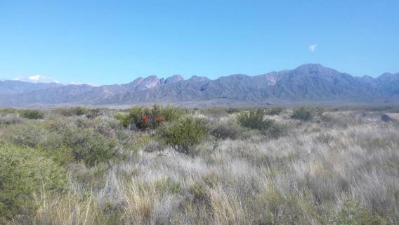 Terreno En Mendoza 1 Ha En Cacheuta