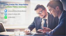 Contabilidad, Auditoria Y Negocios - Contador Público Cpa