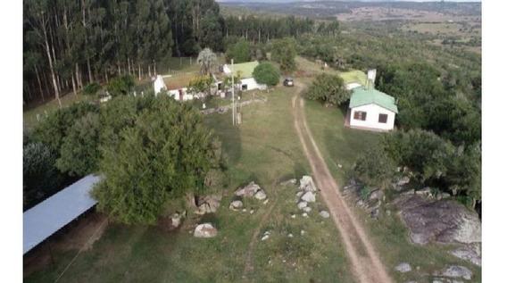 Terreno Campo En Venta Ubicado En Pueblo Edén, Maldonado