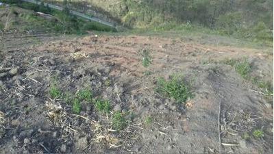 Terrenos En Venta En Cuenca