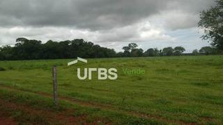 Fazenda À Venda, 11132000 M² Por R$ 9.000.000,00 - Zona Rural - Pium/to - Fa0085