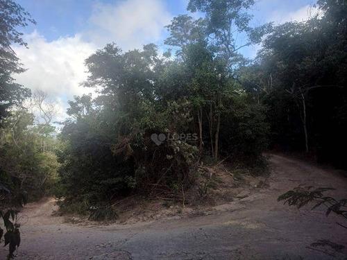 Imagem 1 de 6 de Ótima Área Plana, Em Meio À Muito Verde, 6210 M², R$ 500.000,00 - Rio Do Ouro - Niterói/rj - Te4312