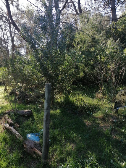 Terreno En Santa Ana Financiado 099 7070 31