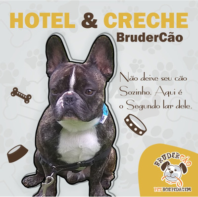 Hotel E Creche De Cães Brudercão