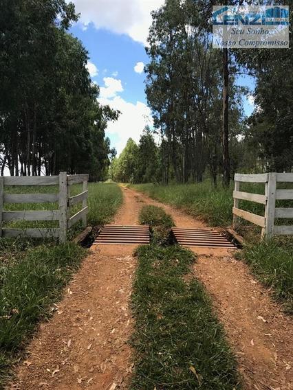 Fazendas À Venda Em Presidente Olegario/mg - Compre O Seu Fazendas Aqui! - 1430789