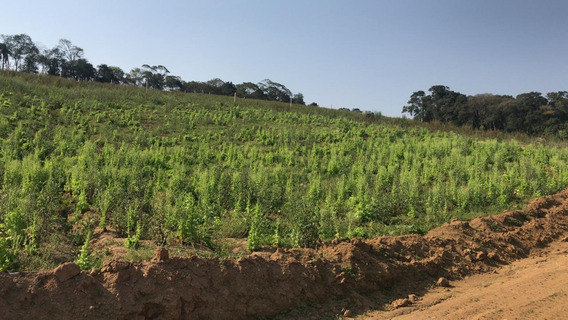 Terrenos Com Preço Promocional Aproveite 23 Mil Em 600 M² J