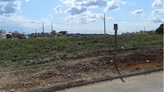 Terreno Para Venda Em Araucária, Iguacu - 4770050055 Dona Rosa