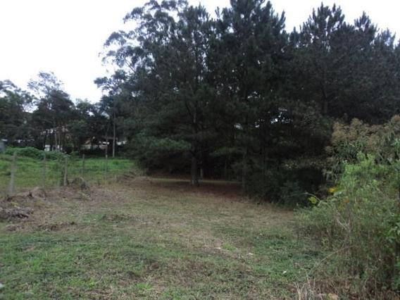 Terreno Em Fazendinha, Carapicuíba/sp De 0m² À Venda Por R$ 260.000,00 - Te319909