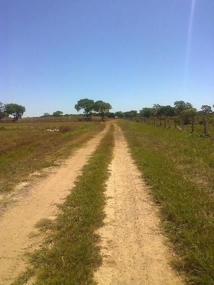 Fazenda Rural À Venda, Lagoa Da Confusão To. - Fa0036
