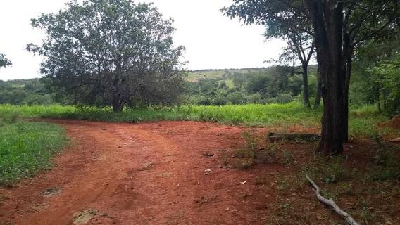 Fazenda 198 Hectares Agricultura E Pecuaria Curvelo Mg - 1401