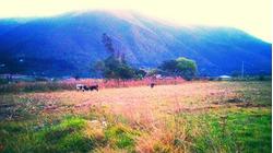 Terrenos En Venta En Huánuco