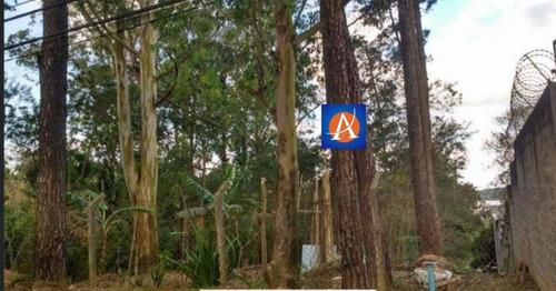 Imagem 1 de 1 de Terreno - 650 Mts 2 - Parque Dos Pinos - Cotia / Sp - Tr37962v