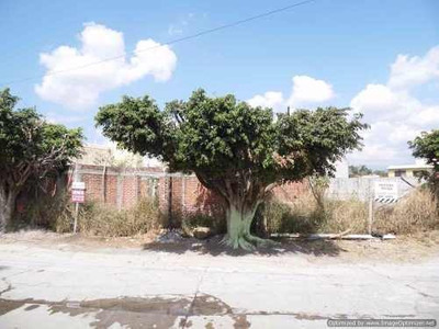 (crm-1404-1841) Terreno En Fraccionamiento Las Fincas Con Vigilancia Clave Tt800
