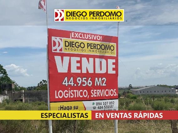 Predio De 44956 M² En Venta, Montevideo