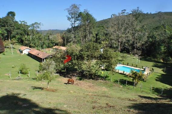 Lindo Sitio Em Cesar De Souza - Ml12261