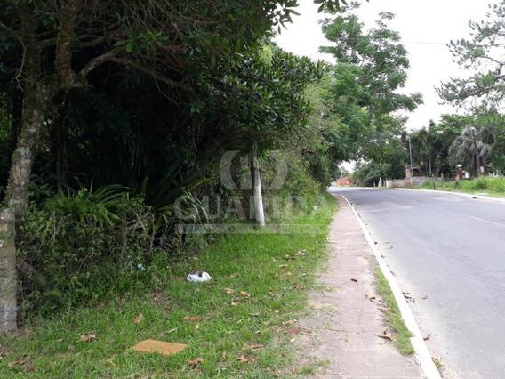 Sitio - Lomba Do Pinheiro - Ref: 66783 - V-66783