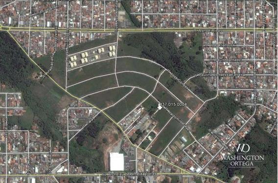 Terreno À Venda, 440 M² Por R$ 244.000 - Costeira - Araucária/pr - Te0191