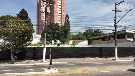 Terreno Av Olivia Guedes Penteado Venda Ou Locação - 7337-2
