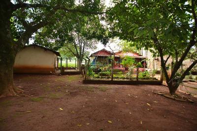 Chácara Em Chácaras Bom Retiro, Goiânia/go De 400m² 4 Quartos Para Locação R$ 5.000,00/mes - Ch107793