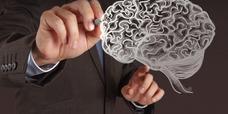 Neurociências - Aulas Particulares Para Grupos