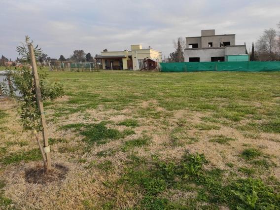 Vendo Lote/terreno Pilar Zona Norte