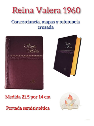 Biblia Reina Valera 1960con Concordancia