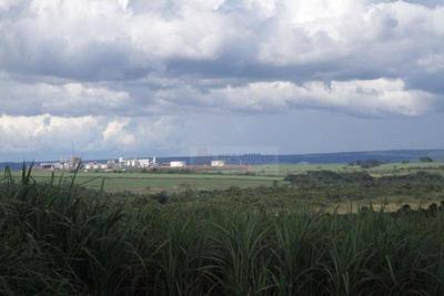 Fazenda Cana Uberaba-6 Km Usina Tijuco- Uberaba -mg - Fa0069